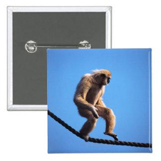 monkey walking on rope 15 cm square badge