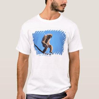 Monkey walking on rope T-Shirt