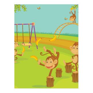 Monkeys Postcards