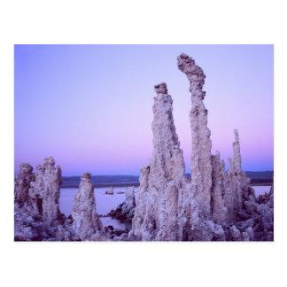 Mono Lake Reserve. California. USA. Tufa Postcard