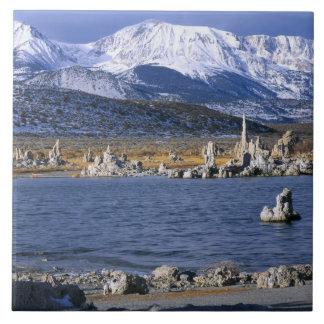MONO LAKE TUFA STATE NATURAL RESERVE, LARGE SQUARE TILE