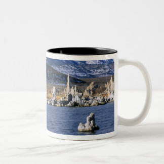 MONO LAKE TUFA STATE NATURAL RESERVE, Two-Tone COFFEE MUG
