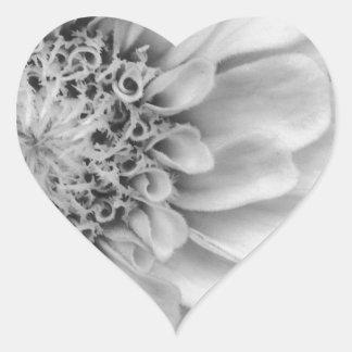 Monochromatic Zinnia Heart Sticker