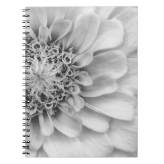 Monochromatic Zinnia Note Book