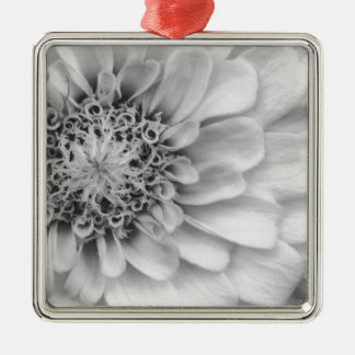 Monochromatic Zinnia Silver-Colored Square Decoration
