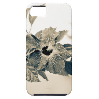 Monochrome Flower Case For The iPhone 5