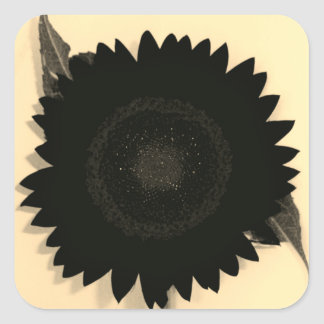 Monochrome Sunflower Square Sticker