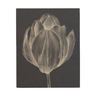 Monochrome Tulip I Wood Wall Art