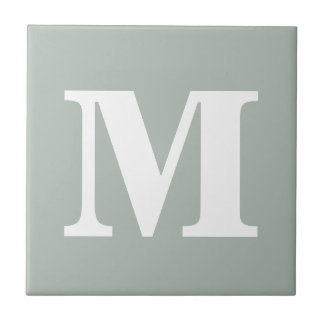 Monogram Ash Grey Contemporary Complementary Color Small Square Tile
