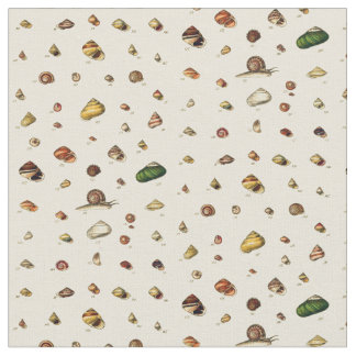 Monographs of Genera of Shells Fabric