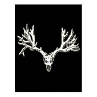 Monster buck deer skull postcard