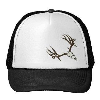Monster mule deer buck skull cap