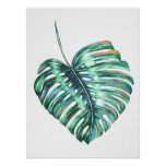 Monstera leaf tropical palm modern watercolor poster