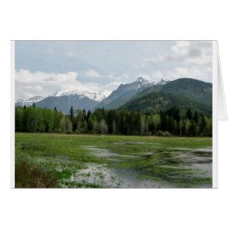 Montana Card