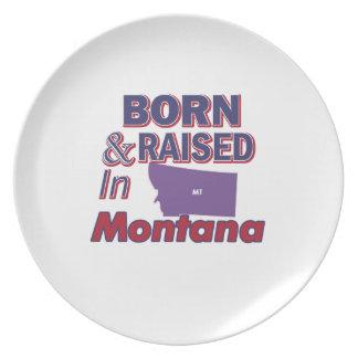 Montana design plate