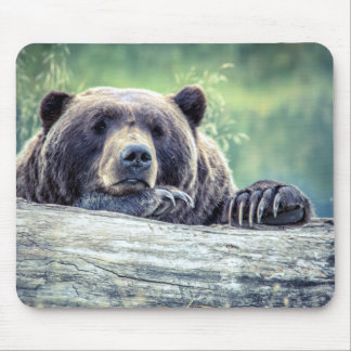 Montana Grizzly Mouse Pad