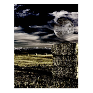 Montana Moon Postcard