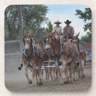 Montana Mule Days June 2016 Coaster