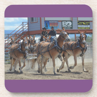 Montana Mule Days June 2016 Coaster