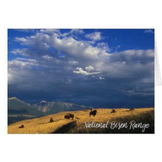 Montana National Bison Range Mountains Clouds Sky Card