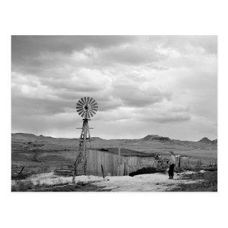 Montana Sheep Ranch 1942 Post Card
