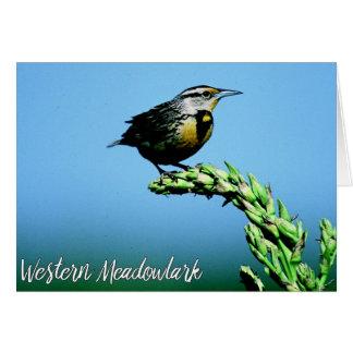 Montana Western Meadowlark Songbird Blue Sky Card