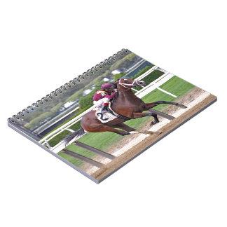 Montauk Notebooks