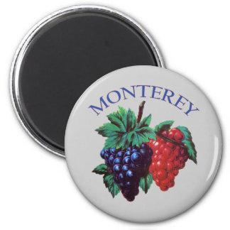 Monterey California Grapes 6 Cm Round Magnet