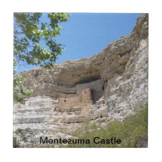 Montezuma Casle national Park Tile