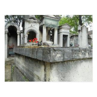 Montmartre Cemetery Cat Postcard
