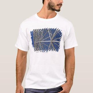 Montreal Biosphere 2 T-Shirt