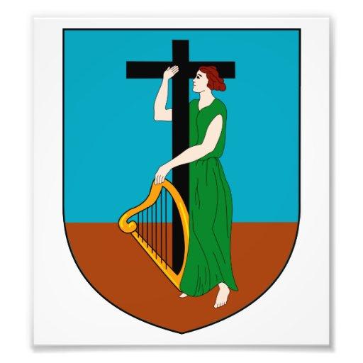 Montserrat Coat Of Arms Photo Art