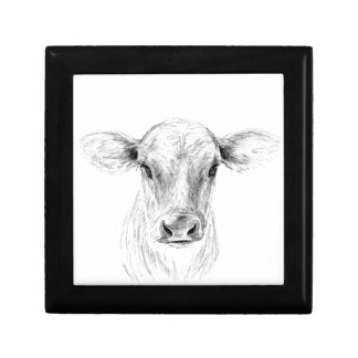 Moo A Young Jersey Cow Gift Box