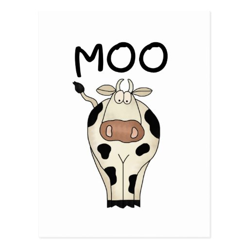 Moo Cow Tshirts and Gifts Postcard