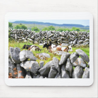 Moo Cows Mouse Pad