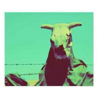 Moody Cow Skull Photo Print