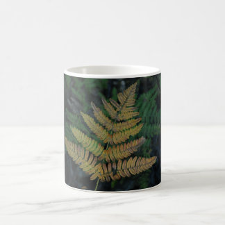 Moody Fern in the Santa Cruz Forest Coffee Mug