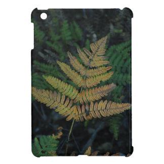 Moody Fern in the Santa Cruz Forest iPad Mini Case