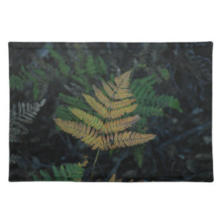 Moody Fern in the Santa Cruz Forest Placemat