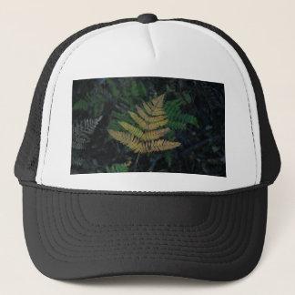 Moody Fern in the Santa Cruz Forest Trucker Hat