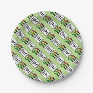 Moody Stoplight Trio On Speed Lim Pi Sign wCaption 7 Inch Paper Plate