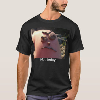 Moody T-Shirt