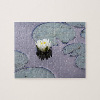 Moody Water Lily Jigsaw Puzzle