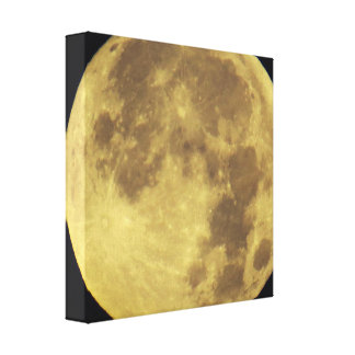 Moon and Craters Canvas Print
