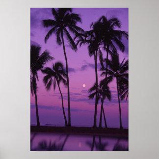 Moon and Palm Tree Print