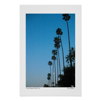 Moon Behind the Palm Trees Poster