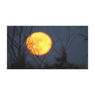 Moon Glow Stretched Canvas Prints