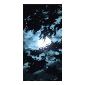 Moon Illuminates the Night behind Tree Branches Personalised Photo Card