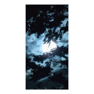 Moon Illuminates the Night behind Tree Branches Personalised Photo Card