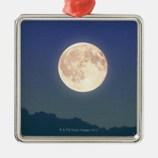 Moon in the Night Sky Metal Ornament
